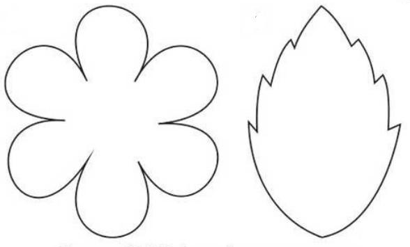 Схема цветка и листика