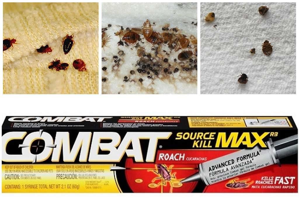 Комбат от насекомых