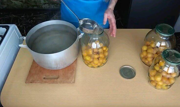 Домашний компот из алычи, абрикосов и груши - рецепт пошаговый с фото