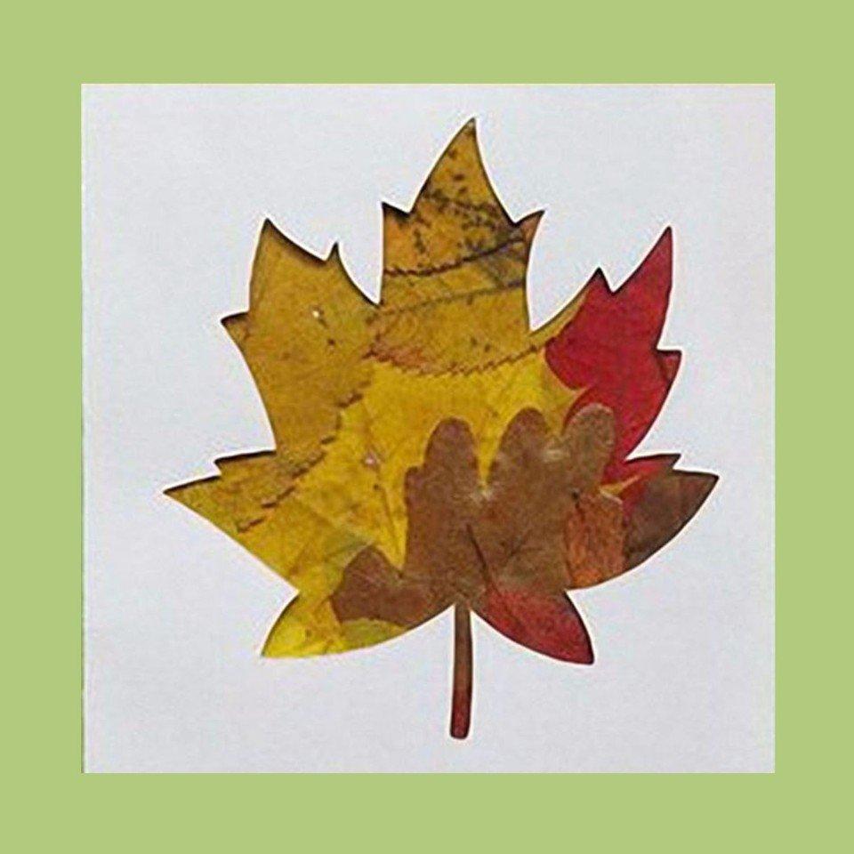 Вислоухими белыми, осенние открытки своими руками из листьев