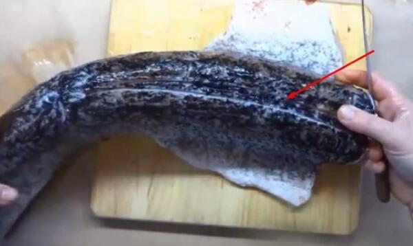 Котлеты рыбные из щуки
